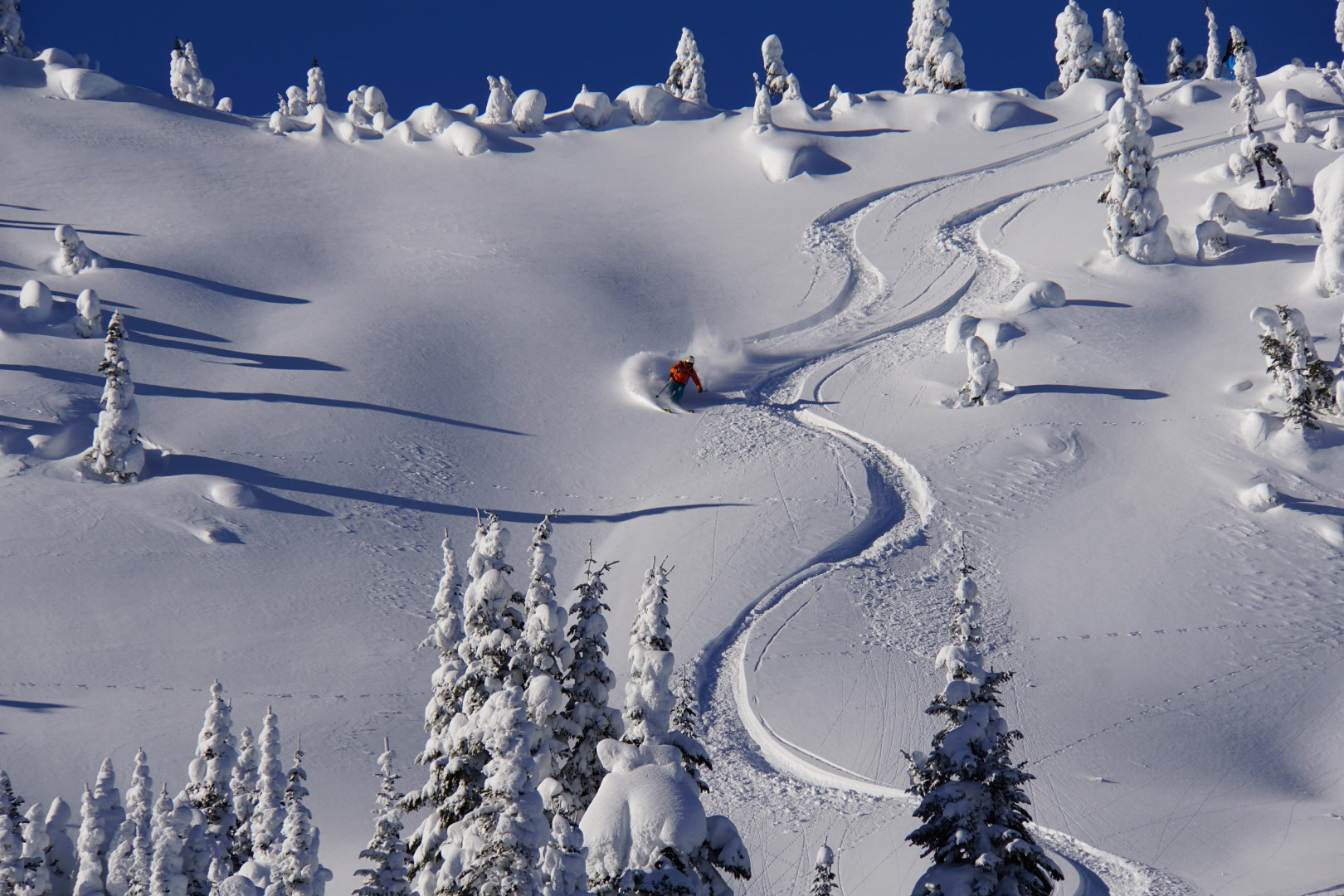 BC Cat Skiing and Boarding