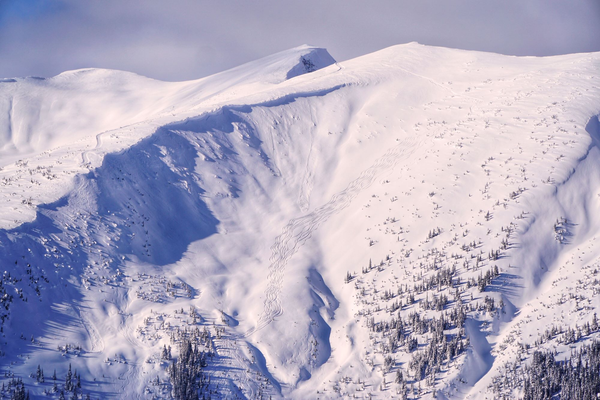 First Lines on Bowl Terrain