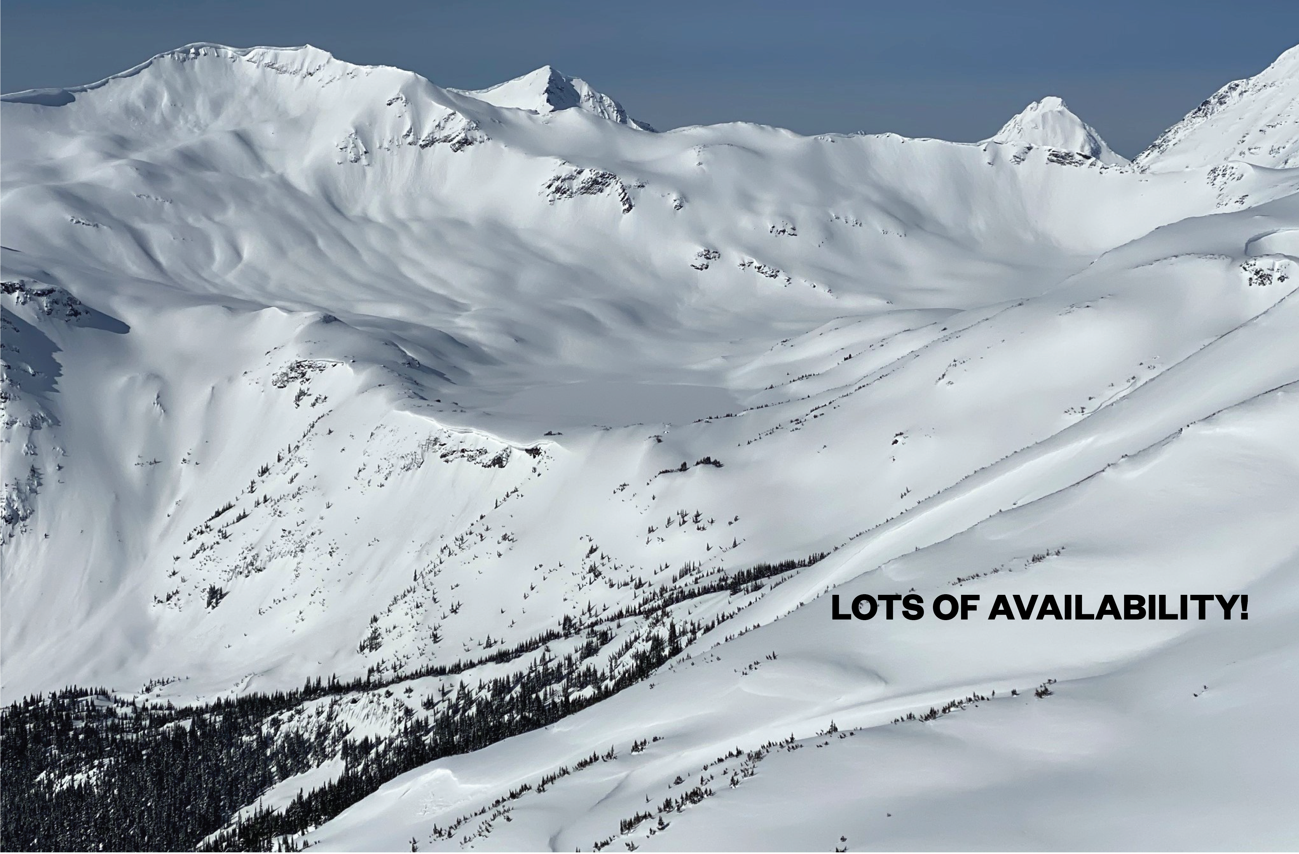 Cat Skiing Availability Open